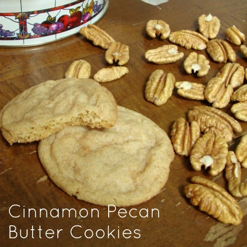 Cinnamon Pecan Butter Cookies