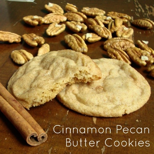 Cinnamon Pecan Butter Cookies-the rich taste of a butter cookie with cinnamon and pecans.