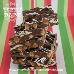 Turtle Bark-Chocolate, Pecans and Caramel all come together in this easy to make Bark.