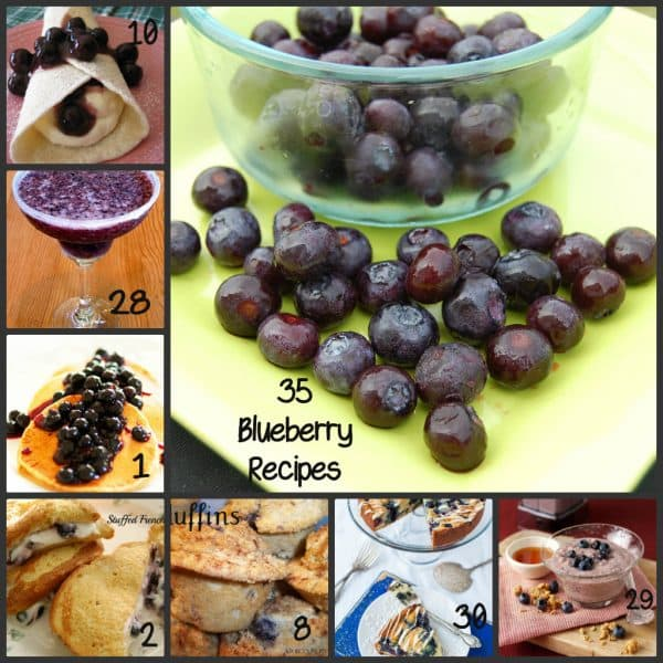 35 things to do with Blueberries featured at Thursday's Treasures