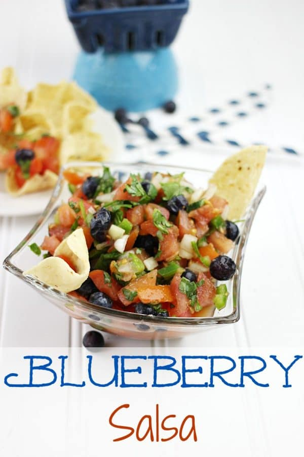 Blueberry Salsa from Plaid and Paisley Kitchen featured at Thursday's Treasures