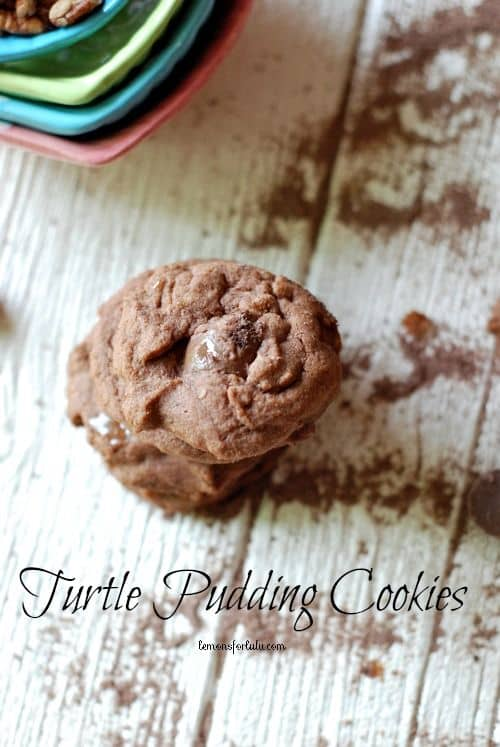 Turtle Pudding Cookies