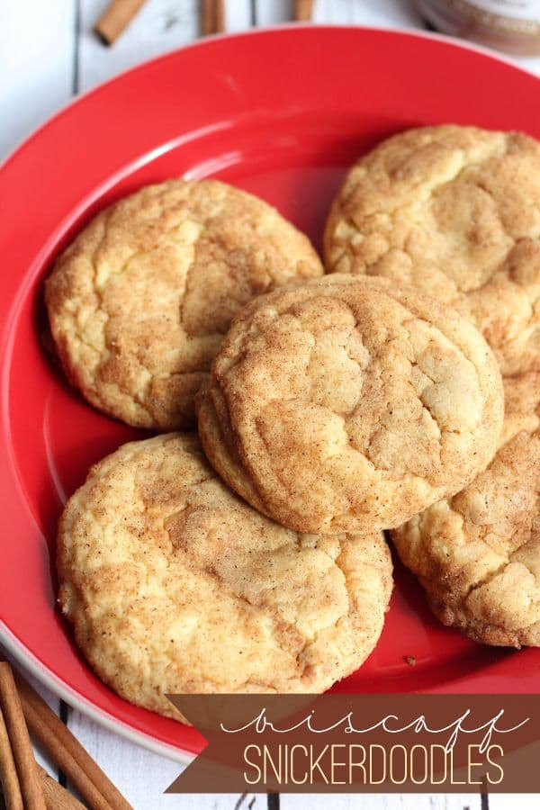Biscoff Snickerdoodles-50 Cookie Recipes to Fill Your Cookie Jar | www.chocolatechocolateandmore.com