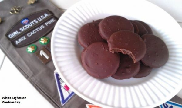 Copycat Thin Mints-50 Cookie Recipes to Fill Your Cookie Jar | www.chocolatechocolateandmore.com