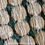 Iced Oatmeal Cake Cookies-A soft cake like cookie drizzled with a sweet icing