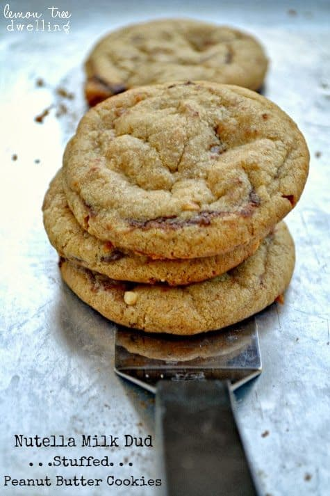 Nutella Milk Dud Stuffed Peanut Butter Cookies-50 Cookie Recipes to Fill Your Cookie Jar | www.chocolatechocolateandmore.com