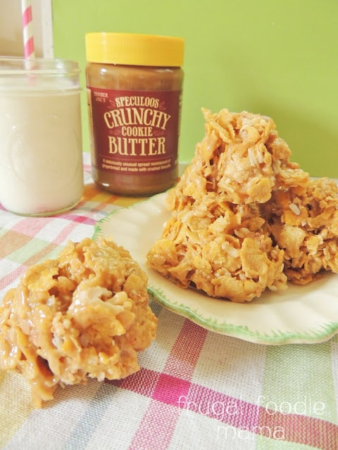 50 No Bake Treats: Cookie Butter Coconut Haystack Cookies