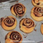 Chocolate Swirled Breakfast Rolls-like a cinnamon roll only chocolate!