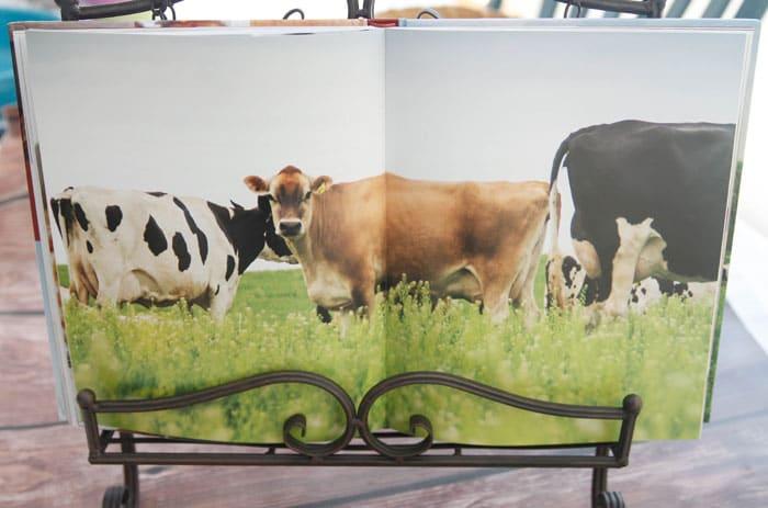 The-Dairy-Good-Cookbook-92c