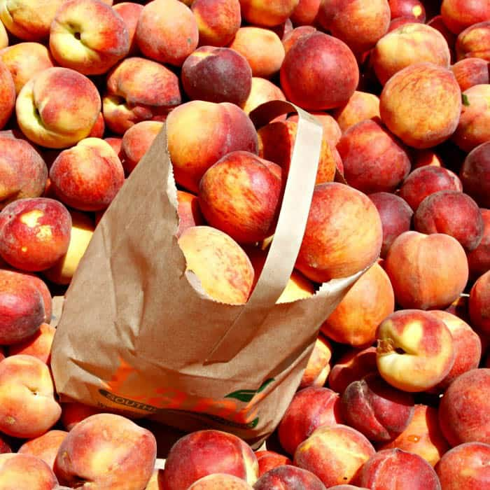 Gerogia Peaches from Lanes Southern Orchards and Pearson Farms
