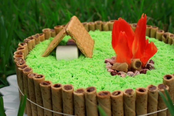 Pleasant Smores Camping Cake Chocolate Chocolate And More Funny Birthday Cards Online Bapapcheapnameinfo
