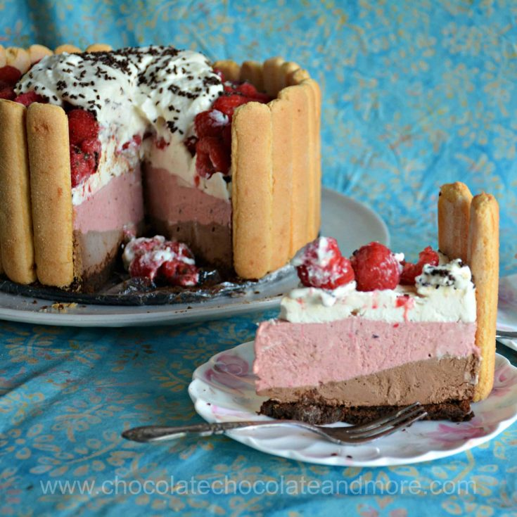 a slice of cake with layers of chocolate and raspberry encrusted with lady fingers