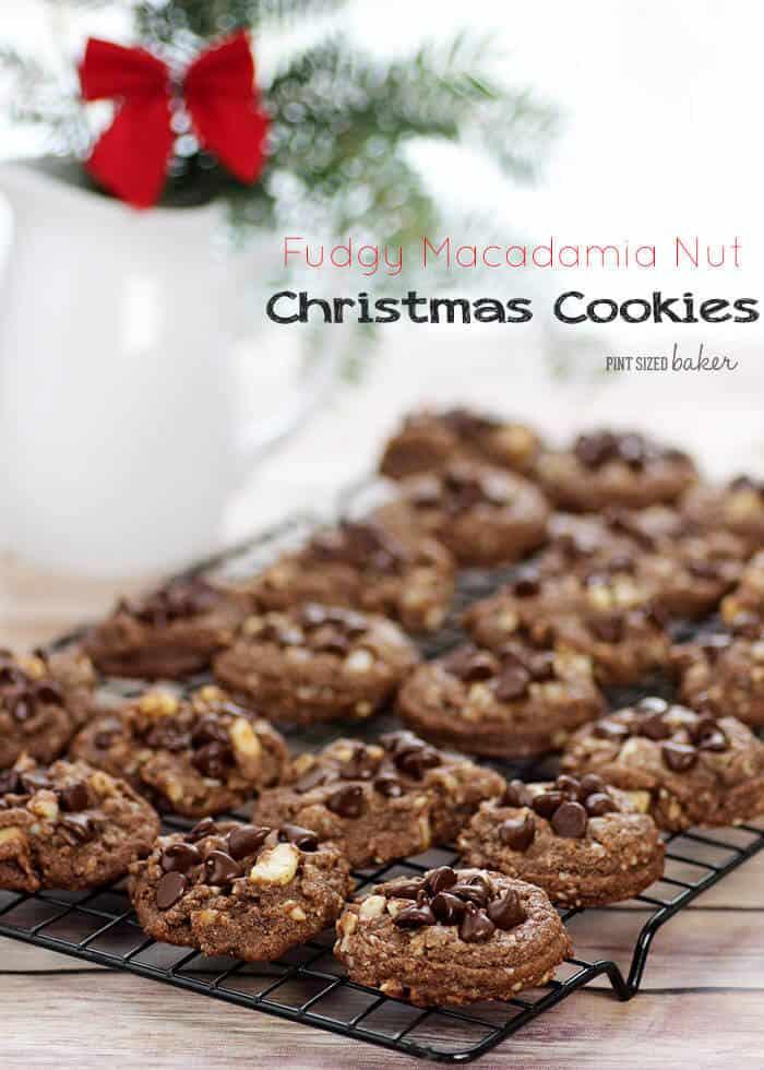 Fudgy Macadamia Nut Christmas Cookies