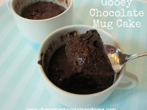 Gooey Chocolate Mug Cake 3 Ingredients Chocolate Chocolate And More