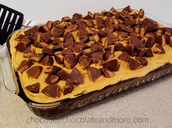 A rectangular pan of cake covered with peanut butter frosting and cut up peanut butter cups.